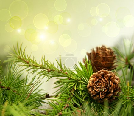 Pine cones on branches with holiday background